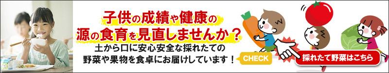 バナー医食同源エネメイク